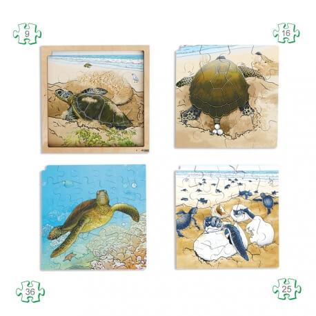 Puzzles naissance La tortue