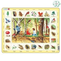 Puzzle avec contour Cueillette en forêt