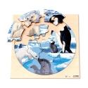 Puzzle rond - Les pôles
