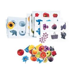 Jeux de couleurs pour activités cognitives - Maxiloto des couleurs