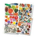 Kit de collage nature 2